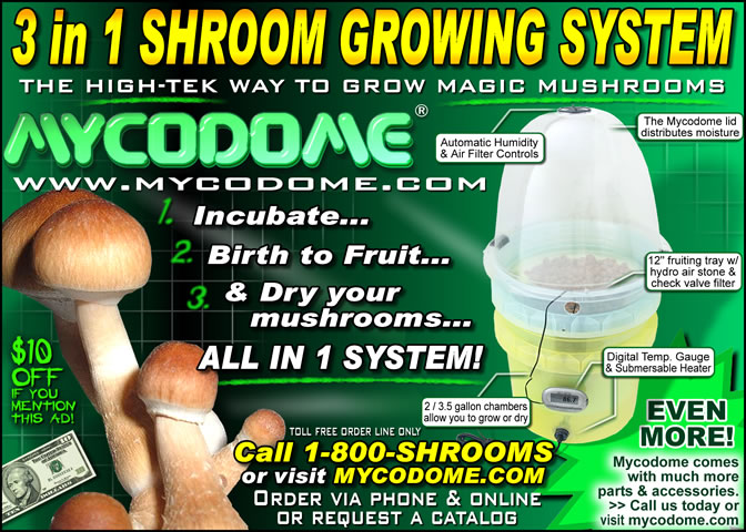how to grow mushrooms commercially uk